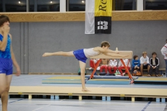 2010-10-08-19-58-11_3_gauliga_in_dillingen
