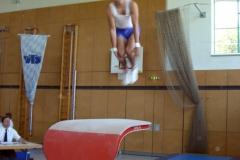 2007-07-08-12-44-18_turnen_wettkampf_landesliga_0064