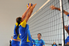 Volleyball-TVD-TVL002