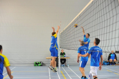 Volleyball-TVD-TVL013