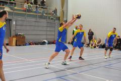 Volleyball-TVD-TVL017