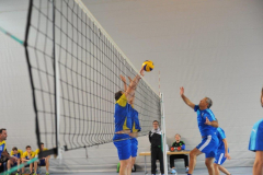 Volleyball-TVD-TVL032