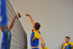 Volleyball-TVD-TVL048