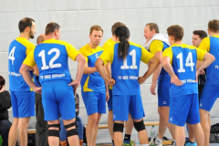 Volleyball-TVD-TVL065