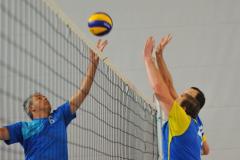 Volleyball-TVD-TVL069