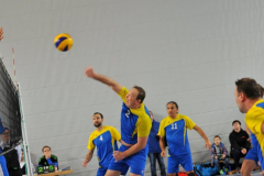 Volleyball-TVD-TVL079-Kopie