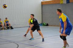 Volleyball-TVD-TVL081