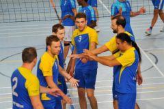 Volleyball-TVD-TVL094