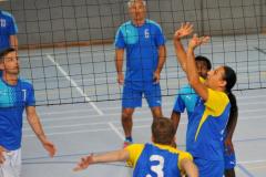 Volleyball-TVD-TVL111