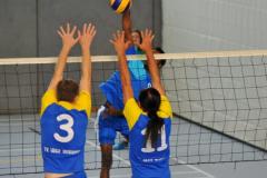 Volleyball-TVD-TVL113
